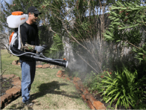 yard mosquito misting fogging services