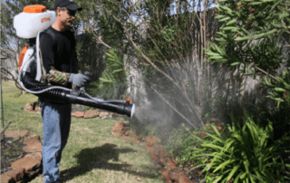mosquito fogging outside event